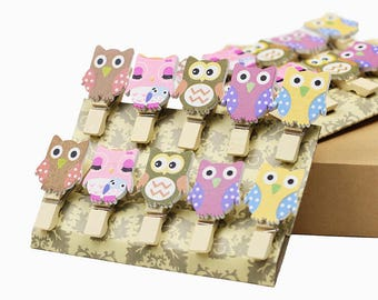 Package of 10 Baby Owl Wooden Mini Clip with Hemp Rope, great for weddings, birthdays and other events