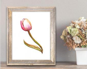 Tulip Watercolor Painting, Tulip Artwork, Tulip Painting, Tulip Art Print, Wall Art Print, Tulip Wall Art, Tulip Watercolor, Watercolor Art
