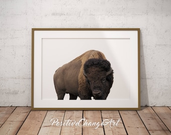 Buffalo Print, Buffalo Art Print, Bison Art, Bison Print, Buffalo Wall Art, Animal Photography, Modern Buffalo Print, Buffalo Printable