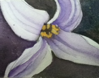 Print of ACEO Lily done in Purples