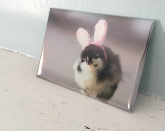Chicks in Hats Chick In Easter Bunny Rabbit Ears Rigid Rectangle Refrigerator Magnet