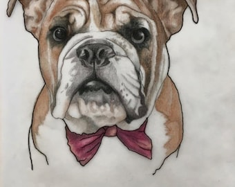 Custom Greeting Cards Pet Portrait (10)