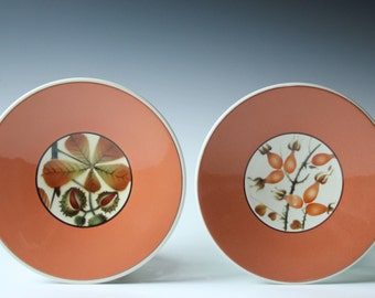 Pair of Faience Denmark Alumnia salad/bread plates - Dragon Fruit and Berries