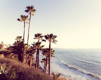 Swami's Beach Photo, San Diego Photography, Ocean Photography, Seascape Print, Gray Beach Scene, Palm Trees Wall Art, San Diego Beach Print