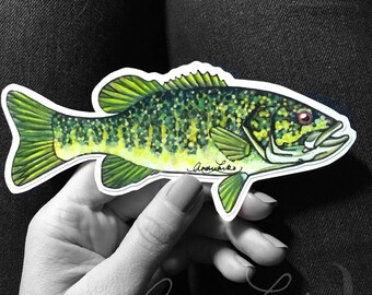 Smallmouth Bass Watercolor Laminated 3M Vinyl Decal