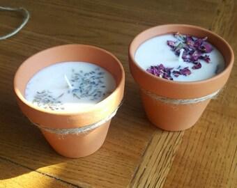 rose petal plant pot candles