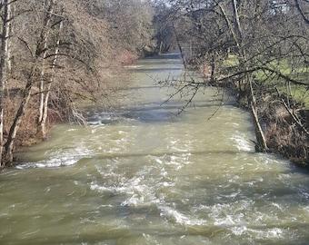 Willamina Creek in Winter
