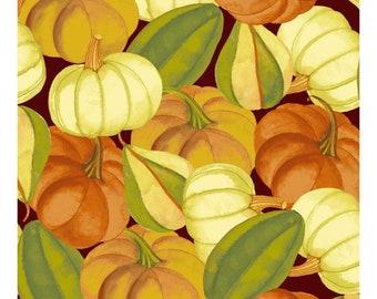 Gourds & Pumpkins Fabric, Fall Quilt Fabric, Clothworks Autumn Reverie CLTY 2181 15 Sue Zipkin, Gourds Fabric, Fall Cotton Yardage
