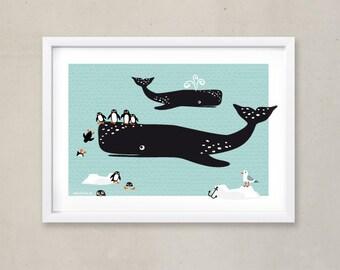 Affiches & illustration animaux pingouins images Chambre enfant