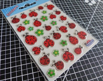 Overall stickers decals Gift mirror - ladybugs & flowers