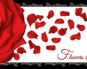 Red Rose Scarf