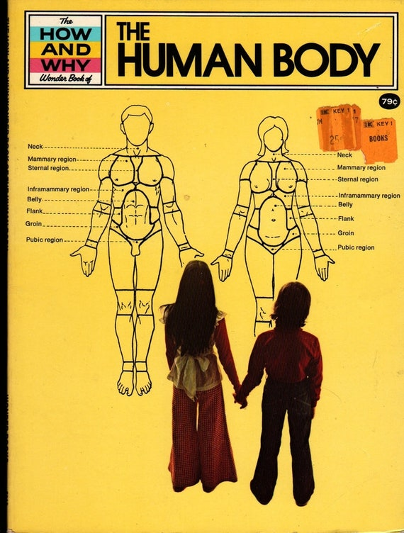The How and Why Wonder Book of The Human Body + Martin Keen + Darrell Sweet + 1976 + Vintage Kids Science Book