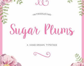 Sugar Plums Script  Hand-Lettered Font Download (aka Sweet Pea)