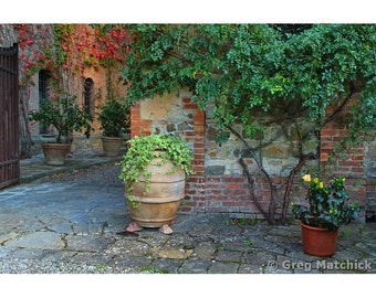 "Fine Art Color Travel Photography of Tuscany - ""Courtyard at a Tuscan Winery"""