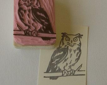 Ref. 48. Great Horned Owl