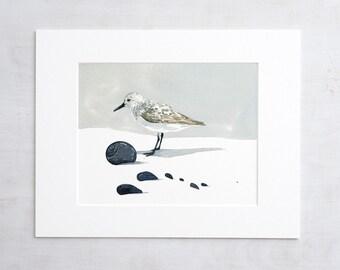 Sandpiper watercolor print, coastal wall art, shorebird beach decor