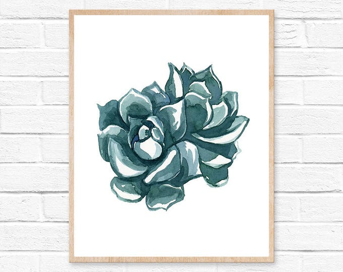 Succulent No.11102 Watercolor Print, Watercolor Plant, Watercolor Cactus, Cacti, Succulent, Succulent Art, Cactus Wall Art, Cacti Decor, Art