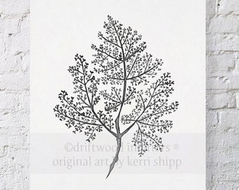 Sea Fern in Charcoal IV 11x14 - Sea Life Wall Art - Sea Coral Watercolor Art