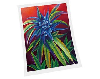 Colorful Bud Fine Art Print