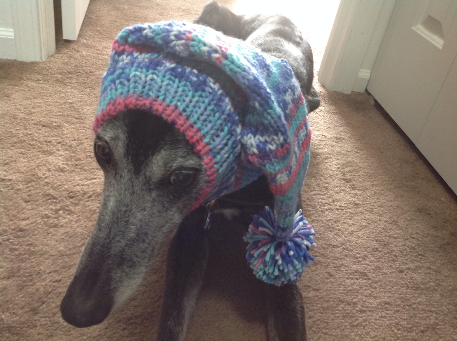 Pointy Hat with Snood for Greyhound in Fair Isle pattern Amber Glow