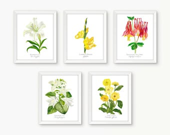 5 Print Individual Botanical Rosary Set, Glorious Mysteries