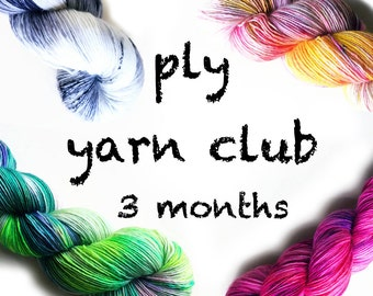 Hand Dyed Yarn Club 3 month membership. Customizable monthly yarn club subscription. Gift for Knitters, Gift for Crafters. PLY Yarn Club!
