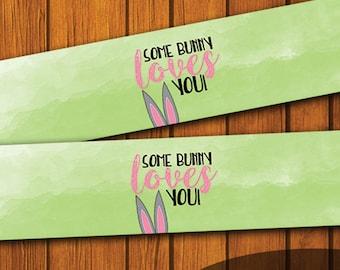 Mason Jar Printable Label / Some Bunny Loves You / Mason Jar / Instant Download / Digital Download / Easter / Spring