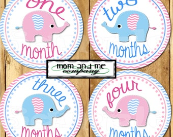 12 Baby Girl Elephant Monthly Stickers Baby Stickers Baby Shower 1- 12 Months onepiece sticker infant monthly stickers pink