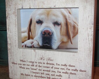 Pet Memory Frame Pet Loss Pet Memorial Picture Frame Pet Sympathy Loss of a pet It's True When I come to you in a dreams, I'm really there