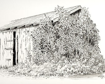 Pen and Ink drawing  -The Old Shed