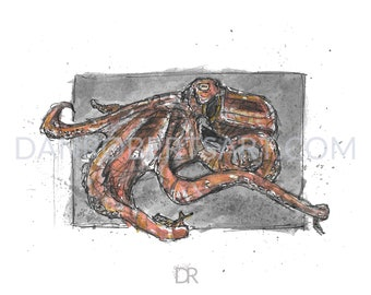 100 Animals, 100 Days: 86/100 The North Pacific Giant Octopus DIGITAL FILE