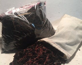 1000 Red Worms Red Wigglers Compost Worms