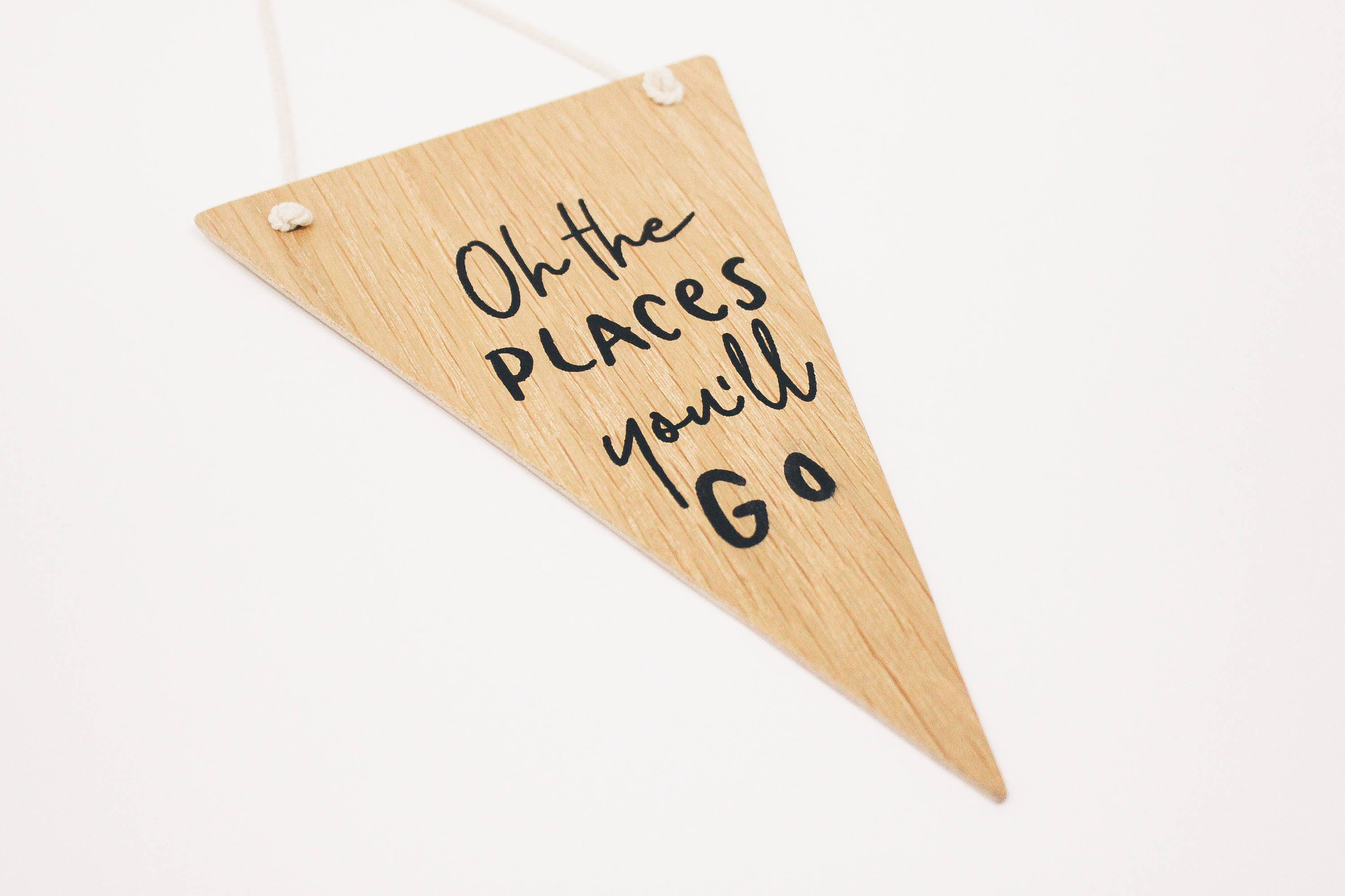 Oh The Places You\'ll Go Mini-Banner Flag. Dr. Seuss Quote.