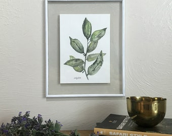 Original Bay Leaves Watercolor