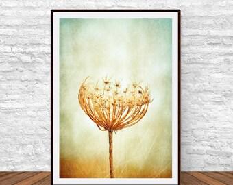 Dandelion Print, Nature Print, Flower Print, Flower Decor, Printable Wall Decor, Flower Poster, Printable Flower Print, Bedroom Wall Decor