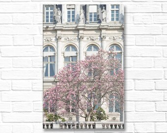 Paris Photograph on Canvas - Hotel de Ville and Magnolia, Gallery Wrapped Canvas, Large Wall Art, Urban Architecture Decor