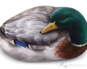 A Unique Male Mallard Hand Painted on a Smooth Sea Stone! Rock Painting Art by Roberto Rizzo | Duck Collection Animal Art Painted Stone