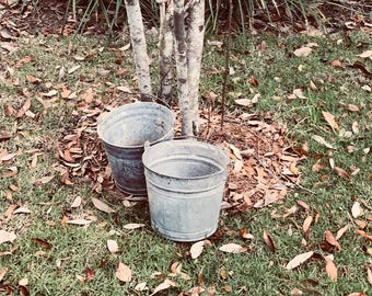 Vintage galvanized buckets for event decor, 12 quart antique wedding arrangements, farmhouse or garden wedding (RENTAL ONLY)