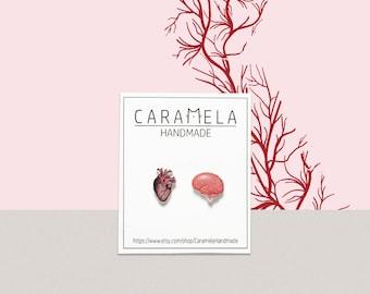 Human Heart&Brain Stud Earrings Real heart Earrings Human heart Human Brain Human organ Brain Anatomy GIFT IDEA