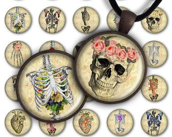 75% OFF SALE Digital Collage Sheet Flower Anatomy 1inch Round 30mm 25mm 20mm Circle Pendant Download PC038 Instant Download Jewelry Making