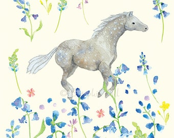 CAREFREE - In the Meadow series - Horse & Floral Art Print