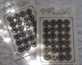 Vegetable Ivory Buttons o...