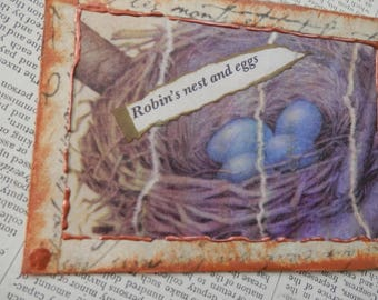 "SALE ACEO ATC one-of-a-kind Original ""Robin's Nest and Eggs"" Artist Trading Card"