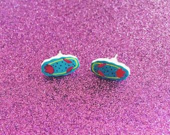 Nudibranch studs