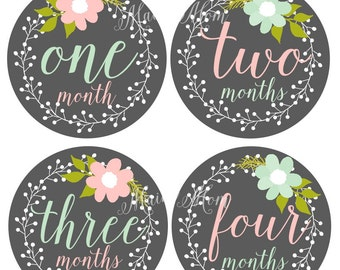 FREE GIFT, Baby Girl Monthly Stickers, Baby Month Stickers, Milestone Bodysuit Floral Wreath, Photo Prop Pink Mint, For Coming Home Outfit
