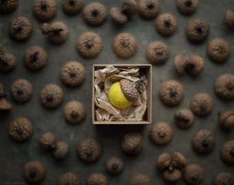 Fridge magnet - Housewarming gift - Baby shower hostess gift magnet real acorn cap felted wool bead in yellow color packed in a craft box