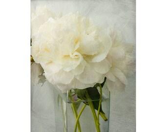 White Peony Print,  Wedding Art,  Floral Art Print, Still Life Photography, Peony Art, Peony Wall Decor, Flower Photo, White Decor