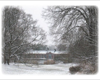 Toward Linnaean House, Winter (Missouri Botanical Garden)