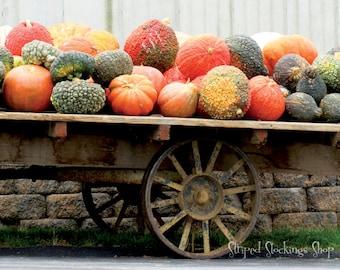"Instant Download October Farm Stand 14""x18"" Photograph Autumn Fall Pumpkins Antique Farm Wagon"