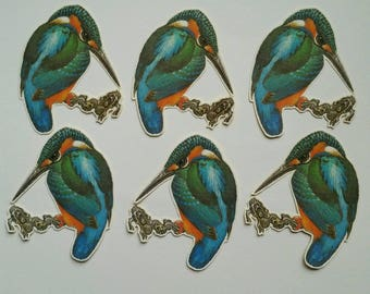 6 x Kingfisher stickers. Snail mail hobonichi midori planner journal decorations. Ephemera.